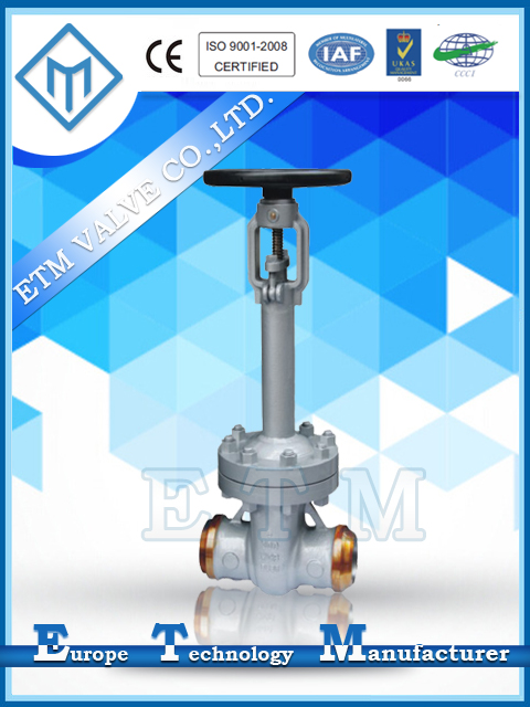 ANSI Bellows Sealed Gate Valve