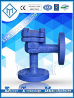 DIN Angle Pattern Lift Check Valve